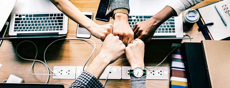 تاثیر فرهنگ سازمانی بر عملکرد سازمانی چیست؟